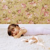 Up to 66% Off Eco-Friendly Carpet Cleaning