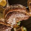 Menu con carne brasiliana e vino