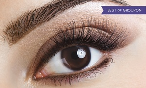 Salon 209: Permanent Makeup for Top or Bottom Eyelids or Full Eyebrows at Salon 209 (Up to 69% Off)
