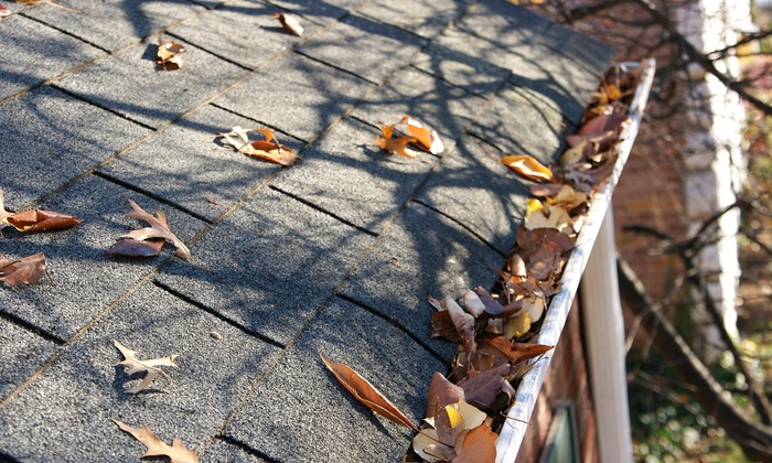 Insight Property Services - Los Angeles: Roof Inspection and Gutter Cleaning from Insight Property Services (52% Off)