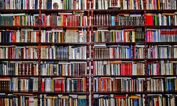 Bradley's Book - Multiple Locations: Discount Books at Bradley's Books (40% Off). Two Options Available.