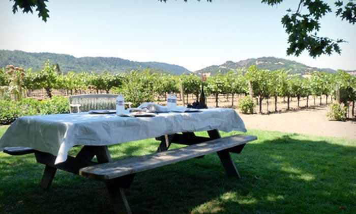 Pilot Knob Vineyard - Briggs: Picnic in the Vines for Two or Four at Pilot Knob Vineyard in Bertram (Up to 52% Off)