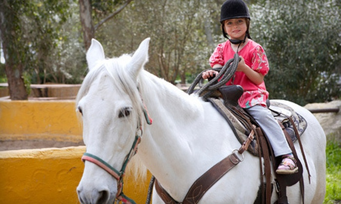 K/B Stables - Norwood Park: One or Three Private Horseback-Riding Lessons or a One-Month Lease with Lessons at K/B Stables (Up to 64% Off)