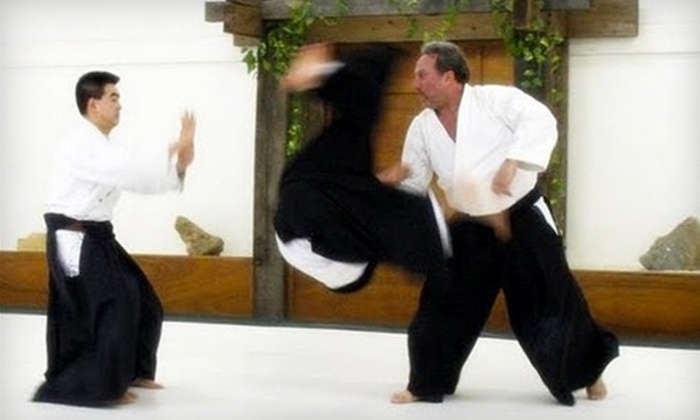 Three Rivers Aikido - Maplewood: One Month of Unlimited Training or Admission to a One-Day Training Seminar at Three Rivers Aikido in Maplewood