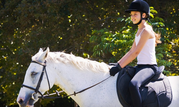 Horseng Farm - Lowhill - Weisenberg Twps. Rural Historic District: Horseback-Riding Lessons or Summer Camp at Horseng Farm in New Tripoli (Up to 61% Off). Five Options Available.