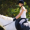 Up to 61% Off Horse-Riding Lessons in New Tripoli