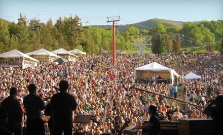 Mountain Jam Music Festival 2011: 1 Single-Day Pass for Fri., June 3 - Mountain Jam Music Festival 2011 in Hunter