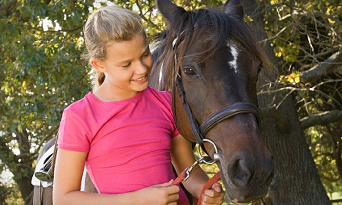 De Equus Stables - Manitowoc: $30 for Two Private Horseback-Riding Lessons at De Equus Stables in Manitowoc (Up to $60 Value)