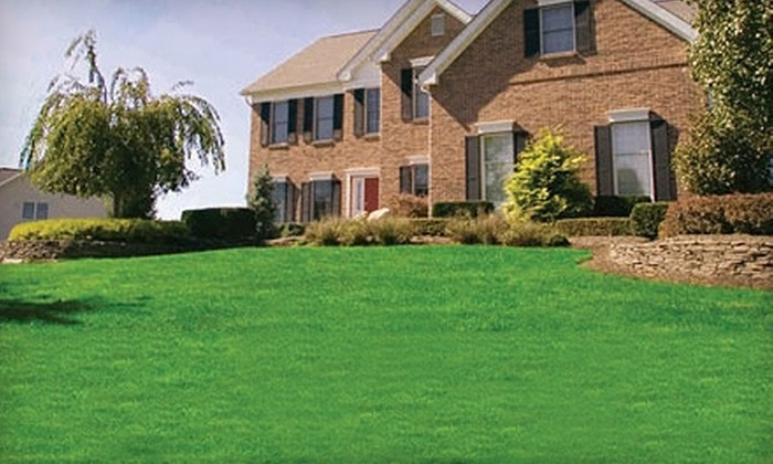 Lawn Doctor - Central Escondido: $25 for a Lawn Fertilization and Weed Treatment from Lawn Doctor ($55.50 Value)