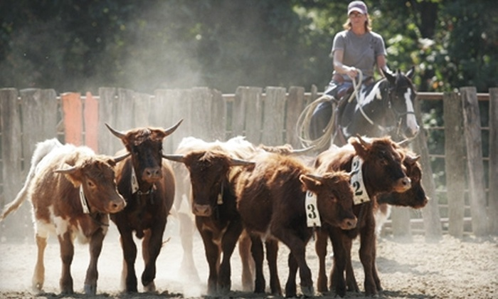 Smoke Rise Ranch - Glouster: $44 for a Two-Night Camping Package and a Group Roping Lesson at Smoke Rise Ranch ($89 Value)