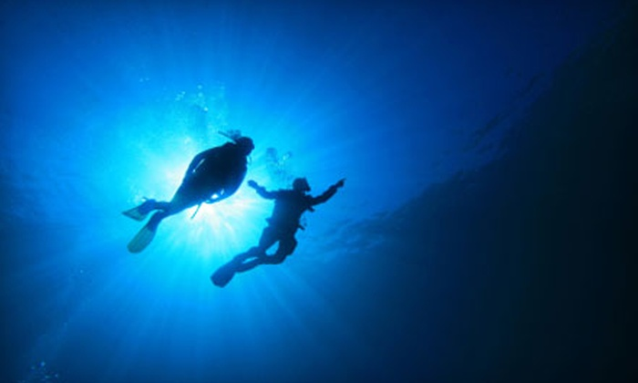 Scuba Works - Jupiter: Snorkeling or Scuba Trips from Scuba Works in Jupiter. Three Options Available.