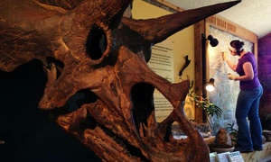 Morrison Natural History Museum: Visit or Membership to Morrison Natural History Museum (Up to 49% Off). Four Options Available.