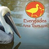Everglades Area Tours - City of Marco: $39 for Two-Hour Powerboat Birding and Photography Tour from Everglades Area Tours (Up to $79.95 value)