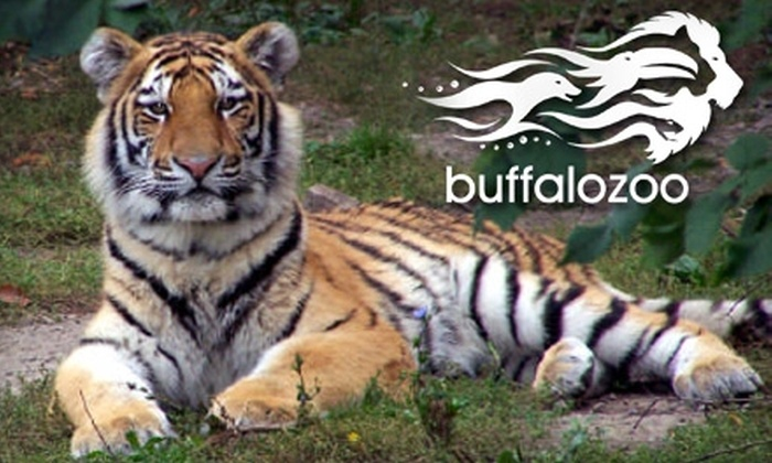 Buffalo Zoo - Delaware Park: $9 for Two Adult Admissions to the Buffalo Zoo ($19 Value)