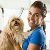 Dog and Cat Grooming Course