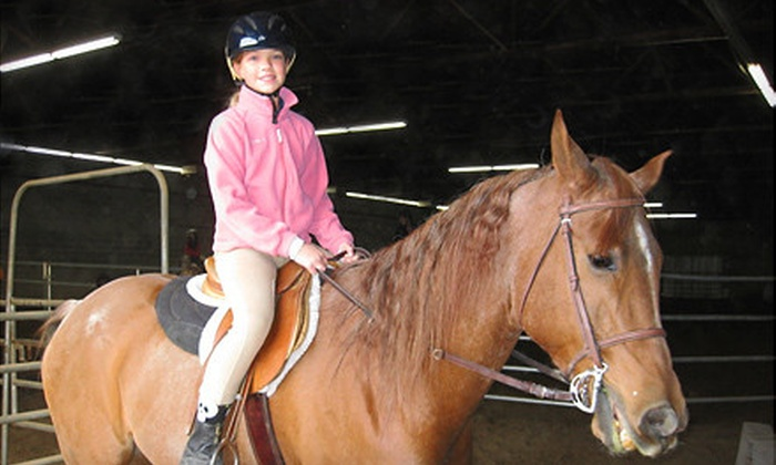 Lashay Arabians - West Jordan: One or Four 60-Minute Private Horseback-Riding Lessons at Lashay Arabians in West Jordon (Up to 54% Off)
