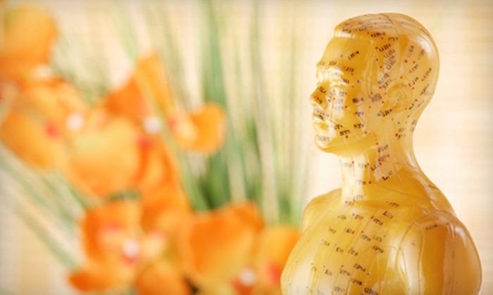 EZ Acupuncture & Herbs - West End: $50 for an Acupuncture Treatment with a Personalized Consultation at EZ Acupuncture & Herbs ($120 Value)