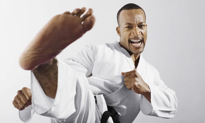 Puma Kenpo - East Rockville: Five Karate Classes at Kenpo Self Defense Classes MD, DC, VA (48% Off)