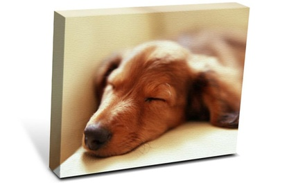 Gallery-Wrap Custom Canvas Print at Katfam Photo (Up to 88% Off). Four Sizes Available.