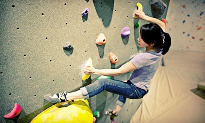 The Hive  - Strathcona: Two-Hour Intro to Bouldering Course with Two Weeks of Gym Access for One or Two at The Hive (Up to 68% Off)