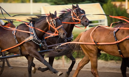 Online Horse Race Betting Credit at TwinSpires (Up to 50% Off)