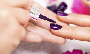 Mode'le Salon and Spa: SNS Nails or Solar Set or Shellac/Gel Manicure at Mode'le Salon and Spa (Up to 44% Off)