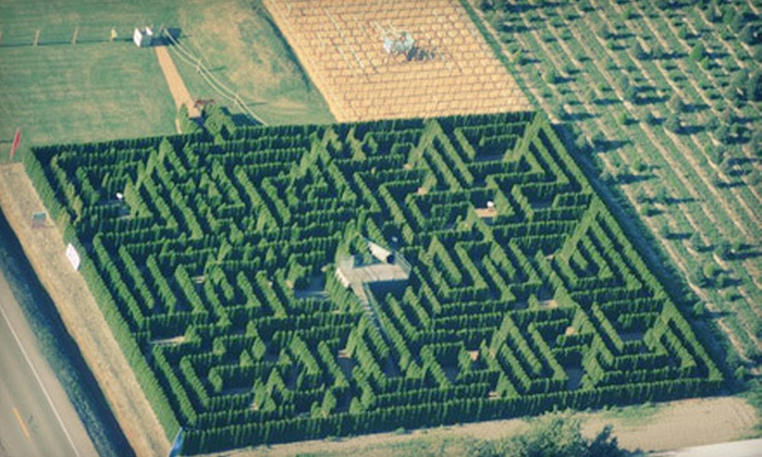 The Berry Barn - La Conner: Hedge-Maze Visit in July or August for Two or Family of Up to Five at The Berry Barn in Mount Vernon (Half Off)