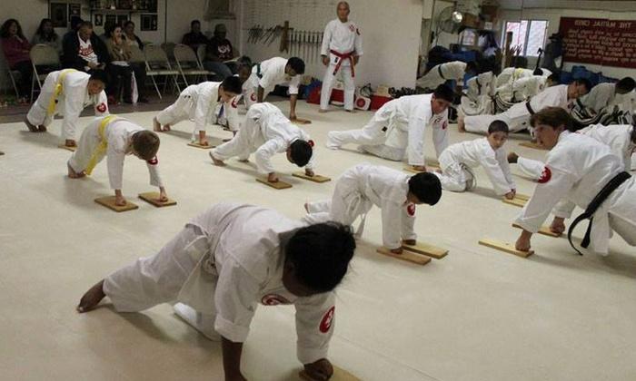 Japan Karate & Judo Center - Owings Mills: $45 for $149 Worth of Services — Japan Karate & Judo Center