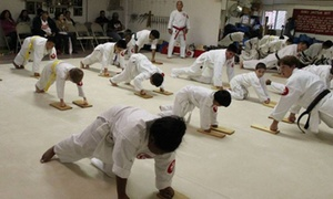 Japan Karate & Judo Center: $45 for $149 Worth of Services — Japan Karate & Judo Center