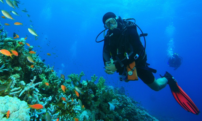 Atlantis Divers - 1: Introductory Scuba-Diving Class for One or Two at Atlantis Divers (Up to 61% Off)