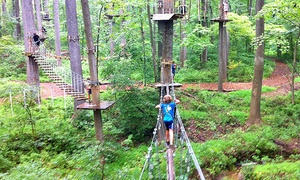 The Adventure Park at Frankenmuth: $23 for General Admission for One to The Adventure Park at Frankenmuth ($38 Value)