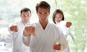 Martial Arts America: Martial-Arts Classes with Uniform at Martial Arts America (Up to 81% Off). Three Options Available.