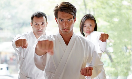 Martial-Arts Classes with Uniform at Martial Arts America (Up to 81% Off). Three Options Available.