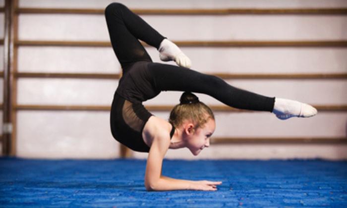 Singularity Gymnastics - Nixa: One or Two Months of Gymnastics Classes with One-Year Enrollment Fee at Singularity Gymnastics (Up to 68% Off)