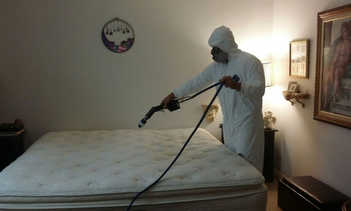 THE REAL GERMBUSTERS - Miami: Mattress Cleaning with a Hypoallergenic Treatment from THE REAL GERMBUSTERS (50% Off)