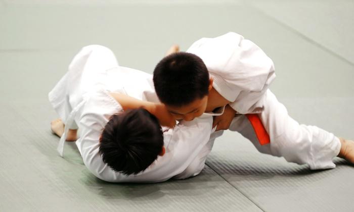 S2 Brazilian Jiu Jitsu - Chesterfield: $20 for One Month of Unlimited Classes for Kids Aged 6–13 at S2 Brazilian Jiu Jitsu ($75 Value)