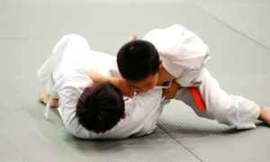 S2 Brazilian Jiu Jitsu: $20 for One Month of Unlimited Classes for Kids Aged 6–13 at S2 Brazilian Jiu Jitsu ($75 Value)