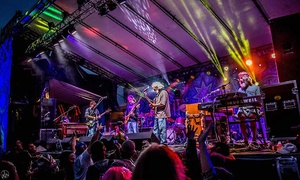 Forever Grateful- Grateful Dead Simulcast & Music Fest: Grateful Dead Simulcast/Music Fest at Ives Concert Park with One Beer or Wine on 7/3 at 3 p.m. (Up to 36% Off)