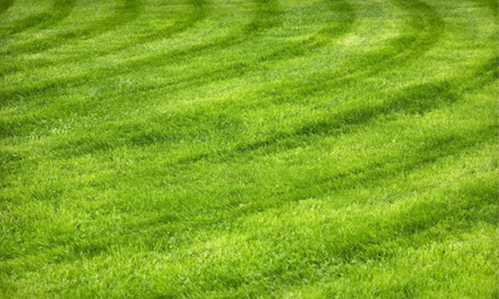 Grass Masters - Omaha: Lawn Aeration with Option for Fertilization or Seeding from Grass Masters (Up to 55% Off)