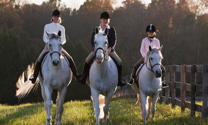 Meadow Creek Farm - Pleasant Valley: One, Two, or Four Private Horseback-Riding Lessons, or Two Group Lessons at Meadow Creek Farm (Up to 55% Off)