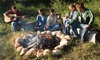 Camp Sandusky - Uptown Leamington: $29 for a 1-Night Stay at a 4-Person Cabin with Two Pancake Breakfasts at Camp Sandusky ($75 Value)