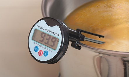 Digital Meat and Candy Thermometer