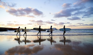 One Wave Surf: 90-Minute California Surfing Lesson for One, Two, Three, Four, or Five at One Wave Surf (Up to 48% Off)