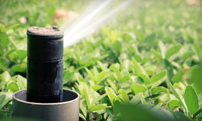 NY Landscape Lighting LLC - Jefferson Valley-Yorktown: Sprinkler Maintenance for Up to 8 or 18 Zones with Optional Winterization from NY Landscape Lighting LLC (Up to 59% Off)