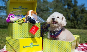Surprise My Pet: One or Three Surprise My Pet Boxes (Up to 35% Off)