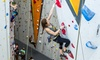 """First Ascent Climbing - First Ascent Avondale: """"Learning The Ropes"""" Class for One or Two at First Ascent Climbing (Up to 53% Off)"""