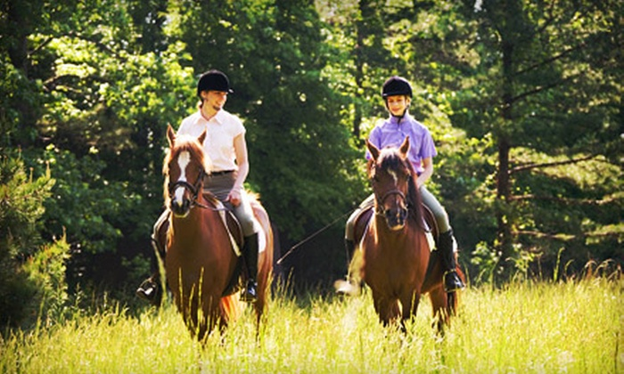 49 Rivers Ranch - Regina: $50 for One-Hour Guided Trail Ride for Two at 49 Rivers Ranch ($100 Value)