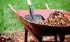 Two Rivers Lawn Care - Atlanta: Three or Six Months of Lawn Mowing and Edging Visits from Two Rivers Lawn Care, LLC (Up to 81% Off)
