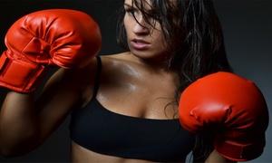 Metrolina Martial Arts: $30 for $100 Worth of Martial-Arts Lessons — Metrolina Martial Arts Institute