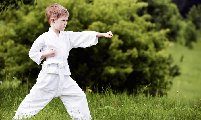 Power Kicks Training Academy - Corinth: 12 or 24 Martial Arts Lessons at Power Kicks Training Academy (Up to 93% Off)